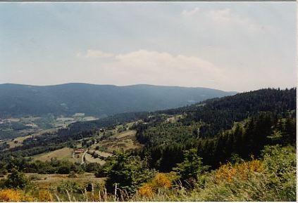 Paysage du Pilat (42) Massif Central - Olivier Longeon